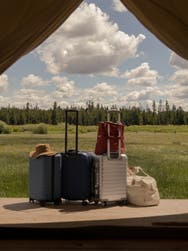 Away luggage, hard shell, aluminum and softsided carry-on suitcases plus travel bags against a forest backdrop.