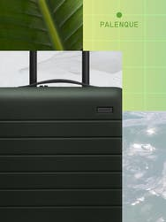Words 'Palenque' in green in a grid line with an Away carry-on suitcase in green with a foliage background.