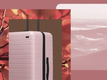 A pink Away suitcase with foliage in the background next to pink mountains.