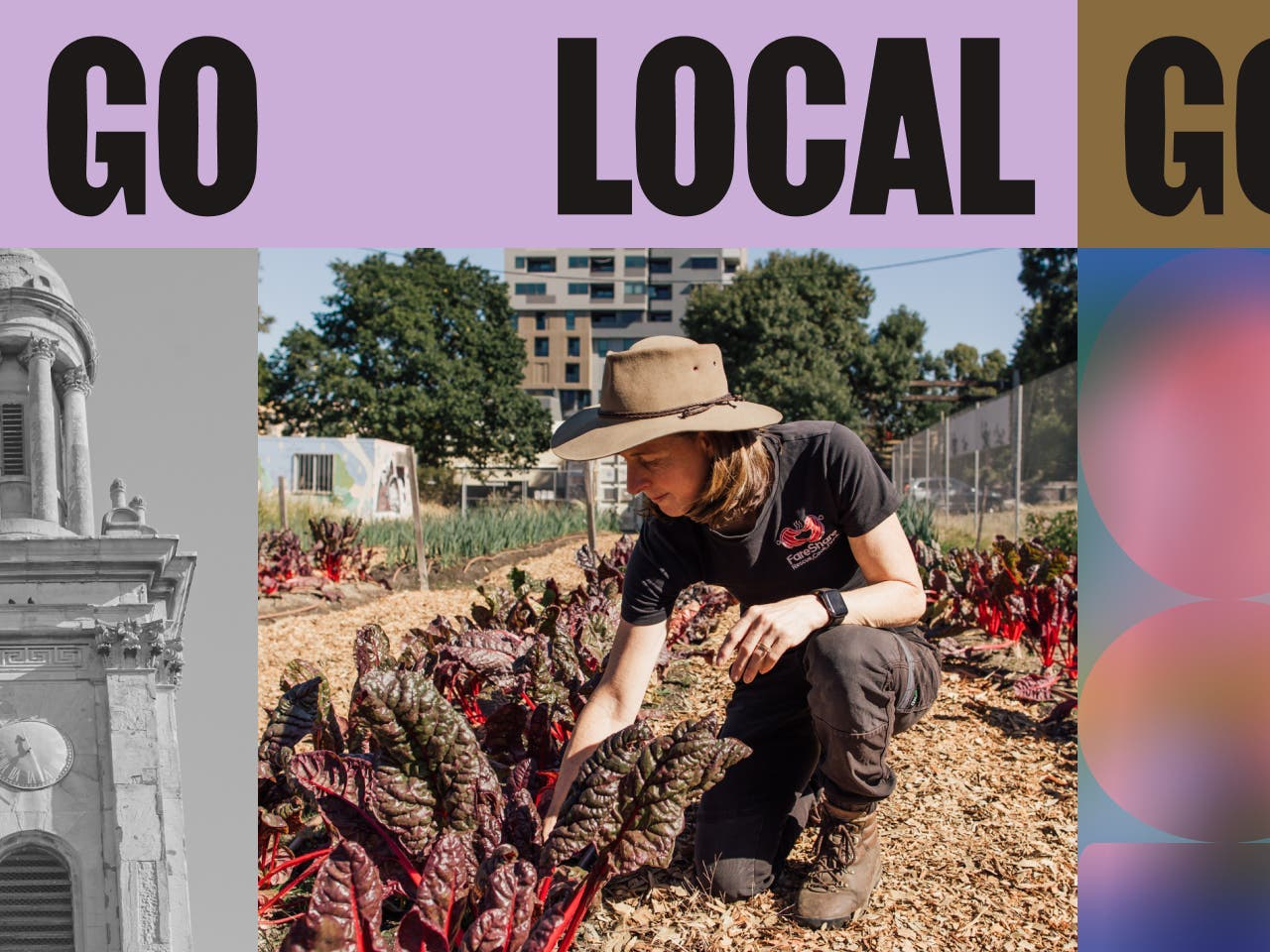 A jargon of images labeled 'Go Local' that are stories from the neighborhood.