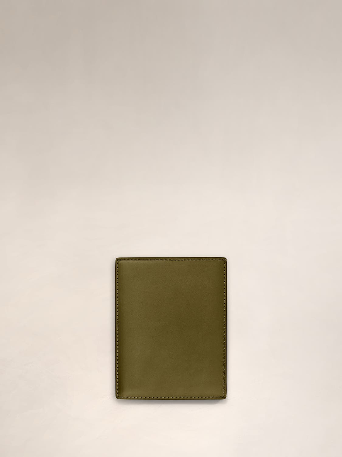 A front view of a sage green passport holder.
